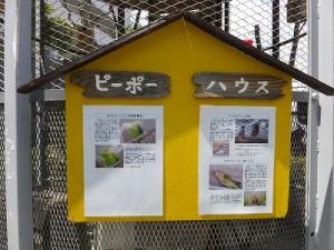 2014_06_16_yamada1