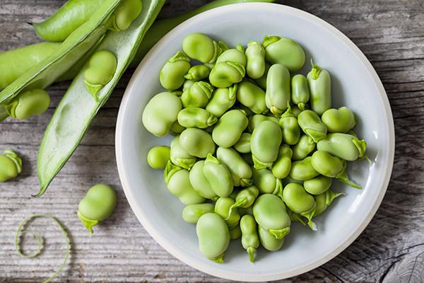 旬の野菜で夏に備えた体づくり! 初夏野菜を使ったおすすめレシピ