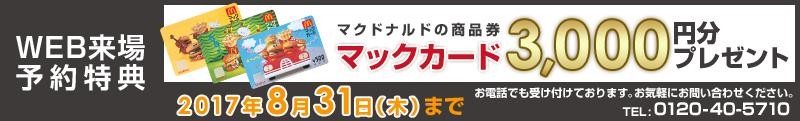 マクドナルドの商品券マックカード3000円分